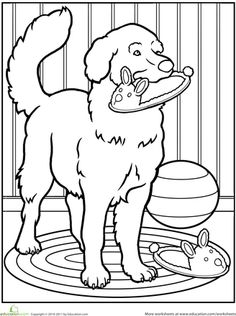 worksheets pet dog coloring page golden retriever puppiesgolden