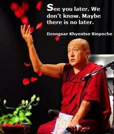 see you later. we don't know. maybe there is no later ~ dzongsar khyentse rinpoche
