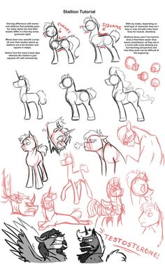 Stallion Tutorial by Assassin-or-Shadow on @DeviantArt
