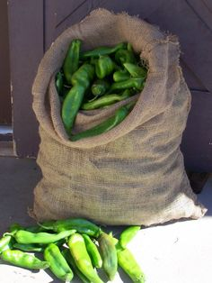 ~New Mexico Memories of Awesome Hatch Green Chile~