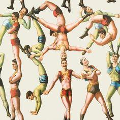 The Acrobats Wallpaper - MINDTHEGAP - Do Shop