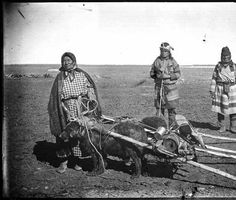 Plains Indians with dog travois.