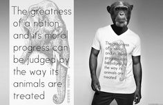 Mahatma Gandhi quote, KIM OKURA design - presented by Mr. Ape