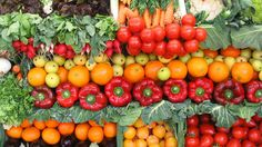 Pétition · Pour une alternative végétarienne obligatoire dans les cantines scolaires · Change.org