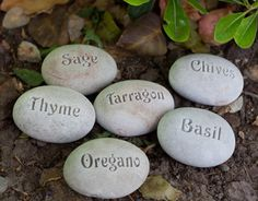 8 Creative Plant Markers - Page 5 of 8 - HomeSpot HQ Blog