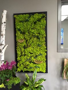 Fabulous custom made moss wall with branches and natural elements. #mosswall