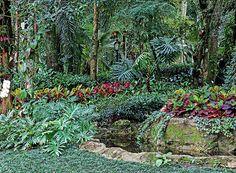 Jardim que parece mata preservada