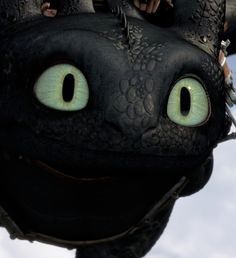 Toothless. Love him!!!