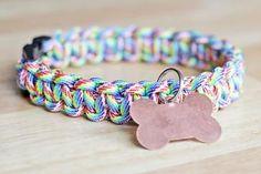 Rainbow Paracord Dog Collar – Tutorial – Hands Occupied