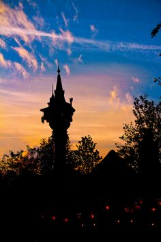 Rapunzel's Tower, Walt Disney World