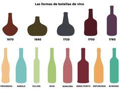 Anatomía de la botella de vino
