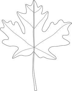 Leaf for leaf patterns