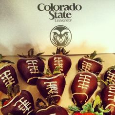 """Football donor gift, end of the season thank you """"suite treat"""""""