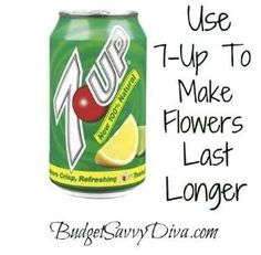 Use 7-Up To Make Flowers Last Longer by jeri