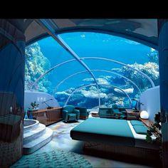 El dormitorio está bajo el agua. Es divertido ver a los peces nadar sobre ti. La casa es muy grande.