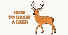 How to Draw a Deer: Featured Image