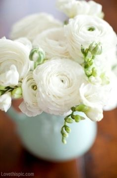 White Bouquet cute photography flowers white vase blooms