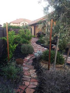 yard after makeover with edibles and a fountain, Danielle C. of Woodland, CA, reader remodel contest 2014