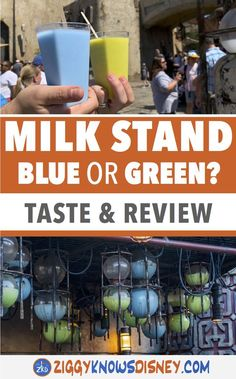 If you have ever watched Star Wars and wondered what the blue and green milk tasted like, you can try it in Disney's Galaxy's Edge! Learn all about the scenes from the movie that inspired these drinks, see the full menu of the Milk Stand, and read all about the blue and green milk including how it tastes! Which one do you think you'll prefer, or maybe you already have a favorite! Learn more about these fun drinks here! #disneyworld #starwars #galaxysedge #disneyfood #disney #traveltips