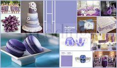 A beautiful wedding collage incorporating the beautiful violet tulip color