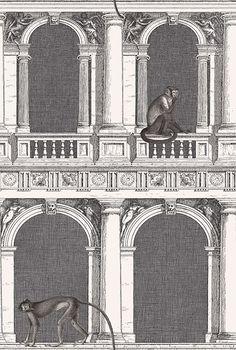 Procuratie e Scimmie wallpaper by Cole & Son