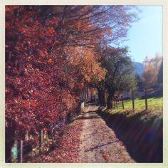 Goldegg Railroad Tracks, Sidewalk, Country, Walkway, Rural Area, Country Music, Walkways