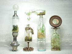 Tiny self-contained ecosytems – beautiful repurposed bottle terrariums.