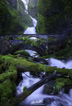 Eden by Chris  Williams Exploration Photography on 500px