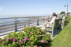 Sainte-Flavie. Photo : Tourisme Gaspésie. #Gaspesie Canada, Quebec City, Outdoor Furniture Sets, Outdoor Decor, Banff, Road Trip, Photos, Tours, Circuit