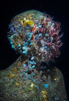Jason deCaires Taylor is an English sculptor specialising in the creation of contemporary underwater sculptures which over time develop into artificial coral reefs.