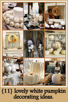 Craft-O-Maniac: 11 Lovely White Pumpkin Decor Ideas