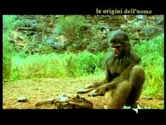 EVOLUZIONE DELL'UOMO A011 riassunto parte precedetne e homo erectus senza - YouTube Homo Habilis, Ancient History, Video, 3, Youtube, Science, Youtubers, Youtube Movies