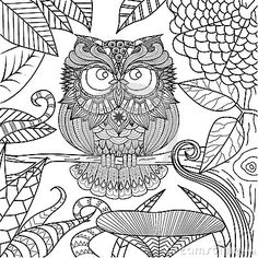 Owl Drawing For Coloring Book. - Download From Over 40 Million High Quality Stock Photos, Images, Vectors. Sign up for FREE today. Image: 58666300