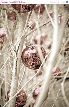 christmas in pink  ~ Ʀεƥɪאאεð вƴ ╭•⊰✿ © Ʀσxʌאʌ Ƭʌאʌ ✿⊱•╮
