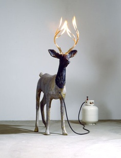 This little guy could turn out to be quite dangerous, but what a cool feature! #Fire #Reindeer