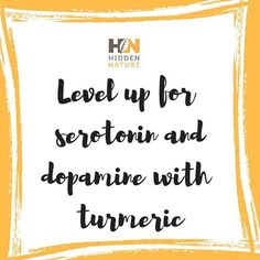 Turmeric supplement comes in handy in this situation too, because it increases the levels of serotonin and dopamine, which cause the reduction of depression.   Hidden Nature has developed an enhanced formula for organic turmeric curcumin with the strongest level of extract to assist a healthy lifestyle and weight management.