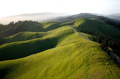 Bolinas Ridge. Marin County We love spending time in Marin.