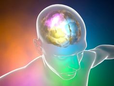 Drugs affect many different parts of the brain, but the neurotransmitter called serotonin is often especially affected by drugs, especially when they are abused. Substantia Nigra, Brain Neurons, I Am A Failure, That One Friend, Subconscious Mind, Do Anything, Law Of Attraction, Drugs, Anatomy