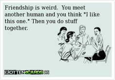 Rottenecards - Friendship is weird.  You meet another human and you think I like this one. Then you do stuff together.
