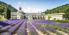 L'Artisanat Monastique : le bel et bien faire des monastères, en France. Paris