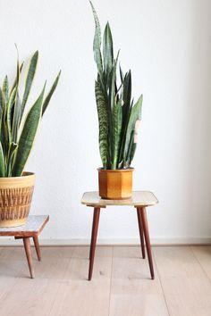 Houten plantentafeltje met formica fineer Decor, Side Table, Wood Diy, House Styles, Rustic House, Furniture, Home Decor, Home Deco, Deco
