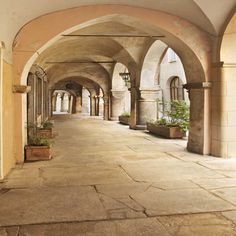 1176 Architecture Stone Archway Backdrop