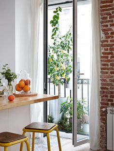 Tall plants by a window create a natural decorative screen  SCREEN WITH A NATURAL CANOPY  Tall plants around the window are a great way to create a warm dappled light, hide a less attractive view, or form a decorative screen if your home is overlooked.