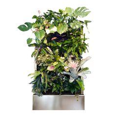 Florafelt Recirc-24 Vertical Garden System from Plants on Walls