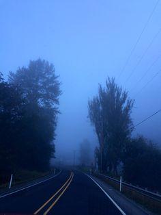 Blue Fog