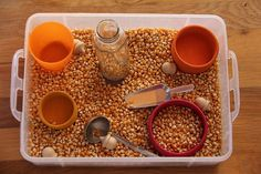 Fall Sensory Bin from Chasing Cheerios Fall Sensory Bin, Sensory Tubs, Sensory Boxes, Sensory Play, Fall Preschool Activities, Sensory Activities, Toddler Activities, Montessori Practical Life, Montessori Toddler