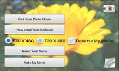 Pics2Flix product application graphics