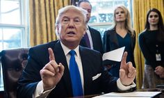 Trump says he WILL launch wide-ranging voter fraud investigation #DailyMail