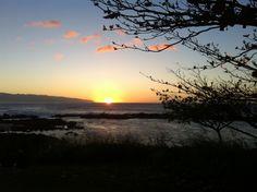 Shark's Cove - Oahu