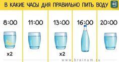 Вы должны знать, что есть наиболее подходящее время суток для питья воды. Сегодня у нас есть важная информация для вас...